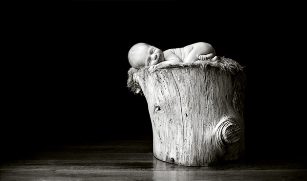 Trunk Baby by Carrie Sandoval