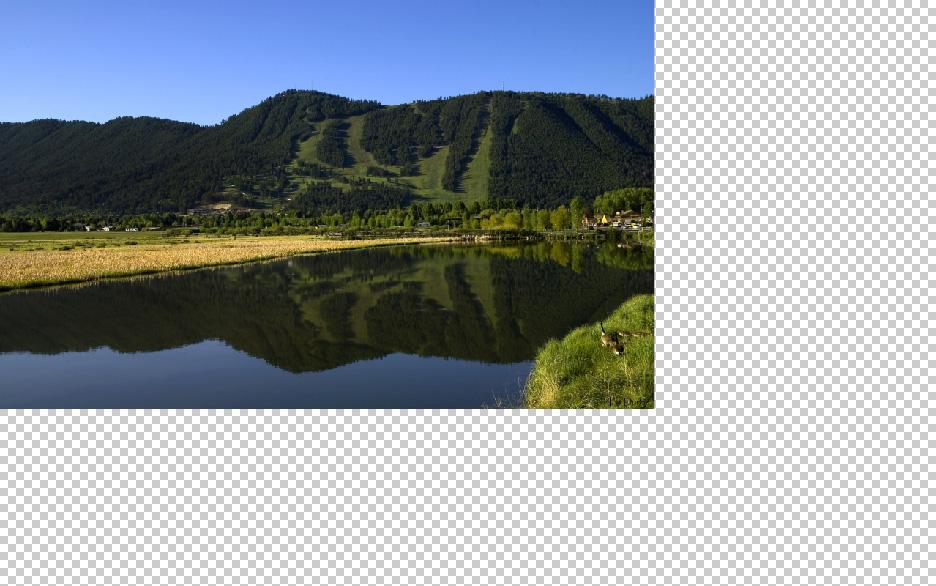 copy landscape to work area